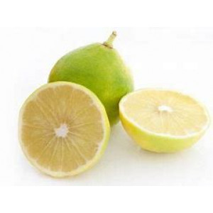 Organic Large Fragrant Lemons Each