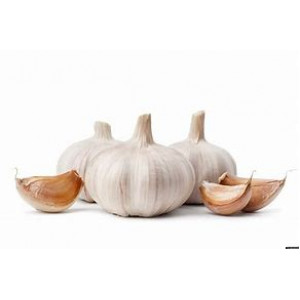 Organic Garlic Bulb Each