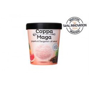 Ice Cream Grapefruit and Bergamot - Sweetened with Stevia 500ml