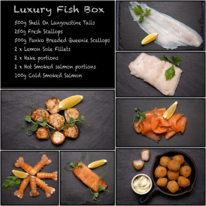 Amity Luxury Fish Box