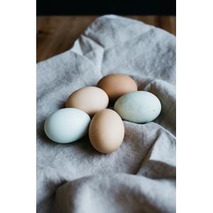 6 Free-Range Fresh Eggs