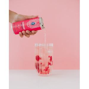 58 Gin Hard Seltzer Raspberry 12 x 250ml